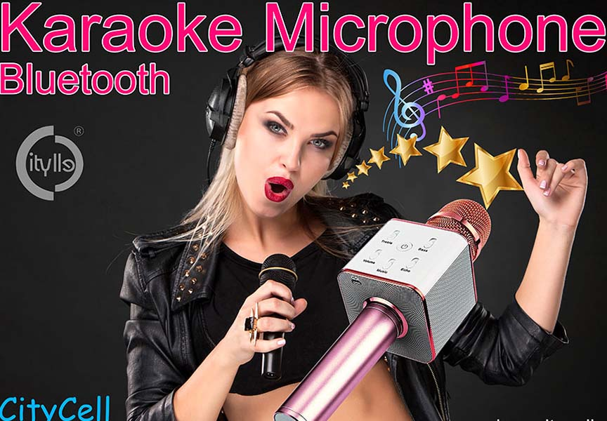 Karaoke Microphone Bluetooth Speaker Singing